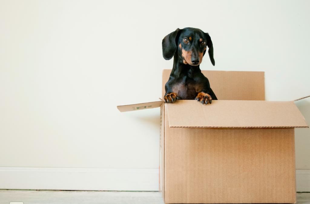 Lo logística, gran reto en el comercio de muebles